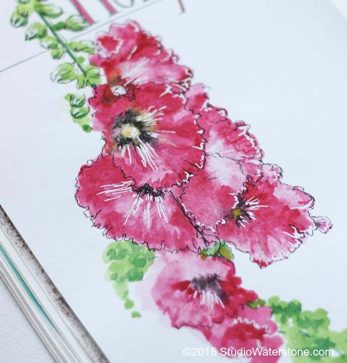 Sketchbook: Hollyhock