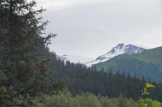 040 Uitzicht in de buurt van Exit glacier
