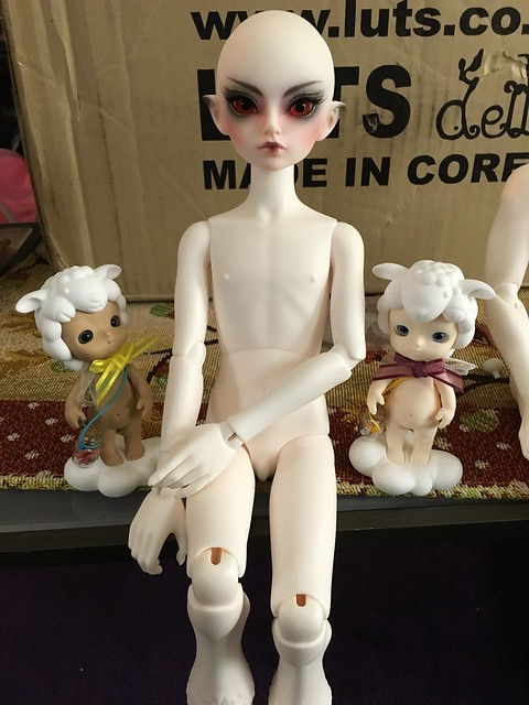The Great Doll Arrival of 2015