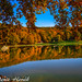 Autumn at the lakepped by Photography Herák Denis