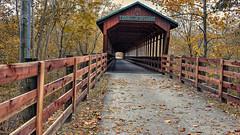 The Bridge Of Dreams