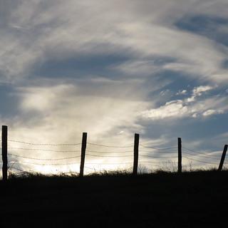 Petaluma Sky