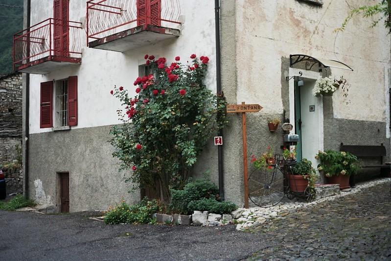 Italian/Swiss boarder // Schorlemädchen