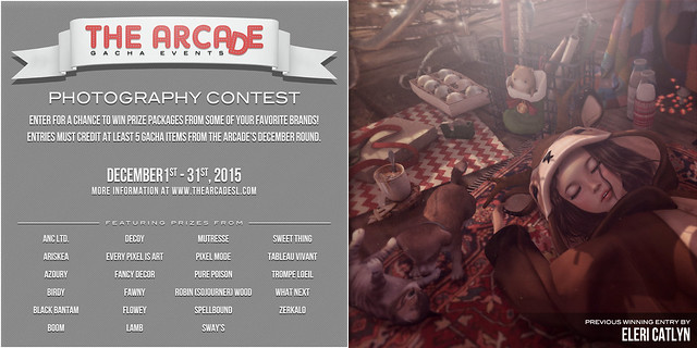 The Arcade Photography Contest - December, 2015
