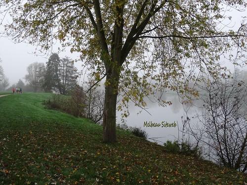 Dans la brume du pays chartrain