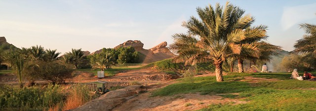 mubazzarah park l ain green
