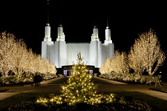 2016 National LDS Temple Christmas Lighting _77