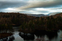 The Lake District -Tarn Hows