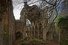 Marne - Abbaye de Trois-Fontaines