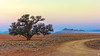 Sunset over the Namib Desert