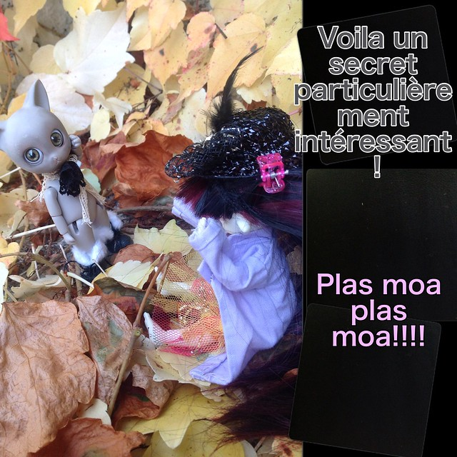 [PS gagnantes jeux mortemiamor] rosemary 9 nov 15 - Page 4 21927768074_563f882f81_z