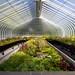 Botanische tuin Glasgow by Bart Weerdenburg