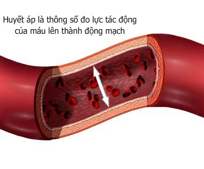 Huyết áp