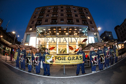 Flashmob da Eataly per dire stop al Foie Gras