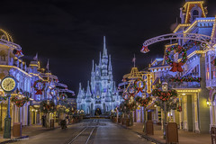 WALT DISNEY WORLD CHRISTMAS 2015