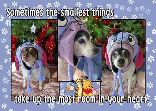 X-Mas 2015 - Smallest Things (Main)