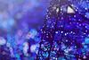 Christmas Tree Lights by gio_naiads