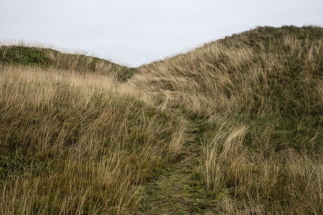 Road Trip Wadden Sea