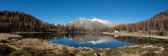 lago san giuliano