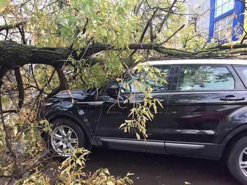 Москвичам советуют не парковаться у рекламных щитов из-за шквального ветра