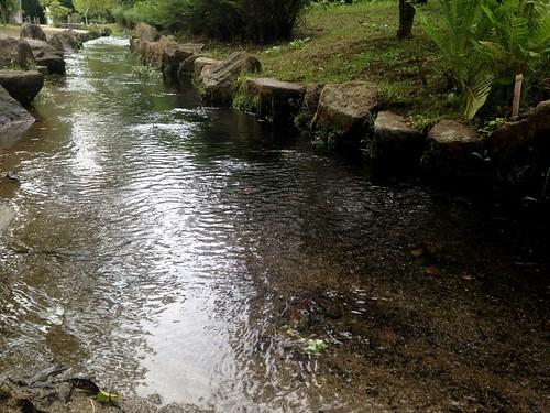 Banpaku park_13
