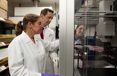 research(1.0), researcher(1.0), person(1.0), laboratory(1.0),