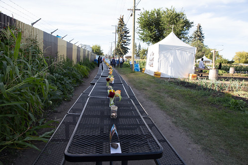 Northlands Urban Farm Dinner