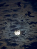 A full moon shines through wispy clouds by snapify