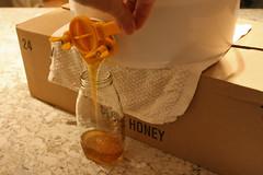 honey filtering IMG_3928