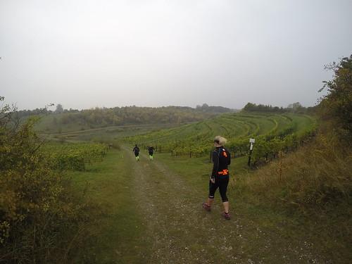 Trailman 2015