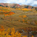 Fall colors near Mt. Crested Butte, Colorado by johnabraham8936@bellsouth.net