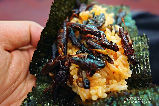 greedy 2nd serving of whopper Grasshoppers Wasps rice on Nori from RAW_DSC0320 thks Charlotte IFF #Insects_oxford Prof Nonaka Kenichi-san