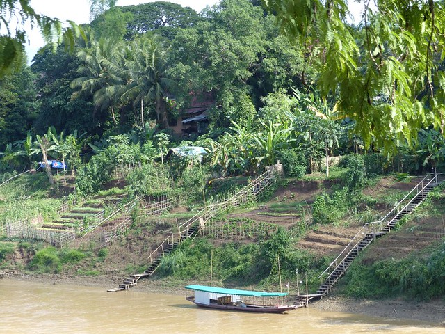 Sur les berges du Mekong
