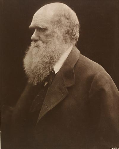 'Charles Darwin', Julia Margaret Cameron, 1868, printed 1875, c Victoria and Albert Museum, London