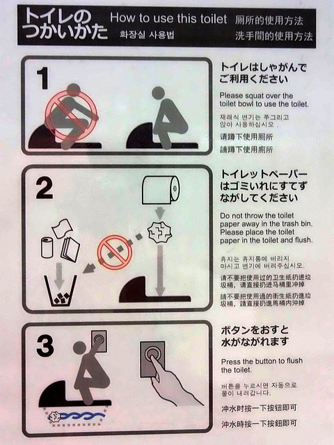 Photo:#9739 toilet instructions By Nemo's great uncle