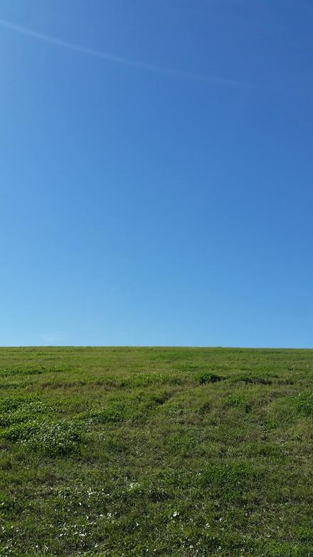 Blank Levee