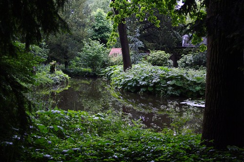 City Nature By René Schmalschläger