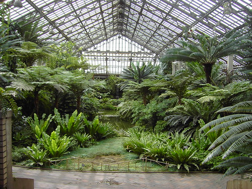 The Garfield Park Conservatory In Chicago, Illinois