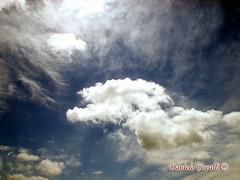 wind(0.0), storm(1.0), cumulus(1.0), cloud(1.0), sunlight(1.0), daytime(1.0), sky(1.0),