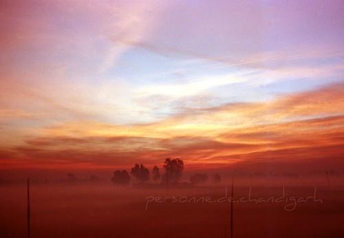 morning sunrise landscape dawn farmland punjab canonet soe amritsar i500 interestingness278 rajasansi abigfave anawesomeshot impressedbeauty rajadawn bstpics bstpicspub bstcan