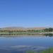 Small photo of Alkali Lake