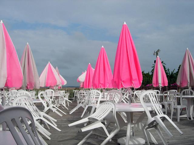 Hot pink umbrellas - TheFind