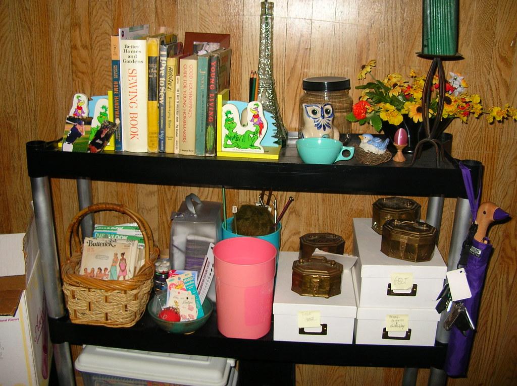 bookish shelves