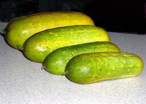 pickles anyone
