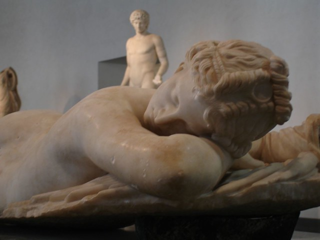Hermaphrodite picture galleries 62