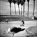Beach Chicken by D. Ingraham