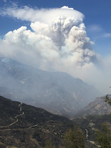 A pyrocumulus cloud forming over the 2015 Rough Fire