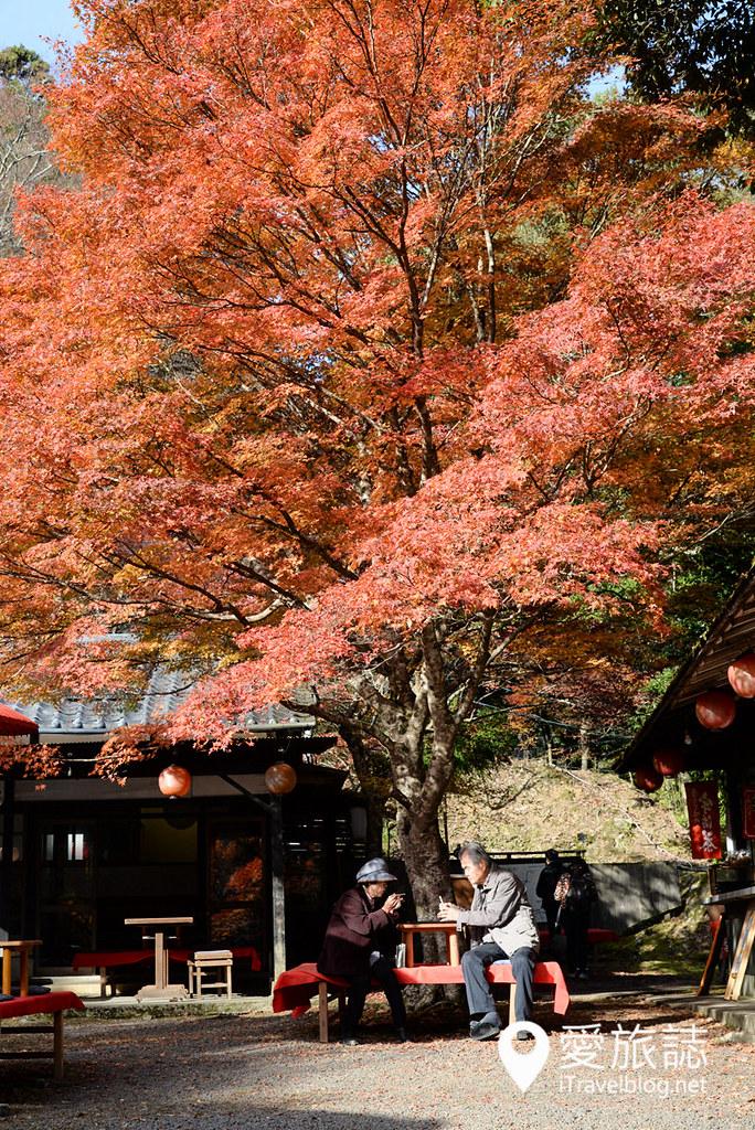 京都赏枫景点 神护寺 高雄茶屋 12