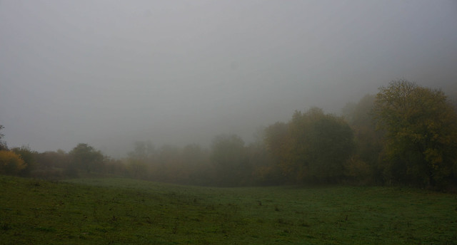 Giverny-16.jpg