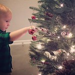Archer helps grandma and grandpa decorate for Christmas. Photo credit - grandma! by bartlewife